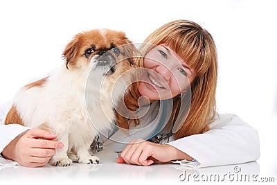 Vet and little dog.