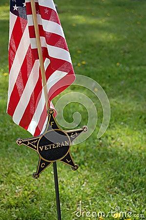 Free Veteran Flag Royalty Free Stock Photo - 7106275