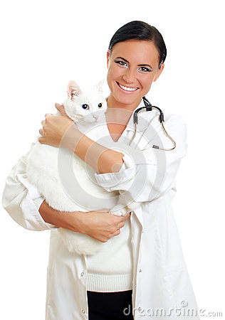 Veterinarian with a cat