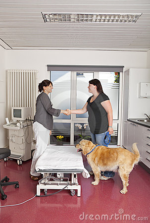Veterinarian shaking hands with dog onwer
