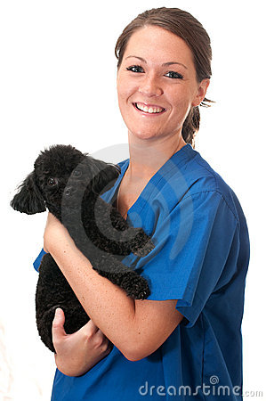 Free Veterinary Assistant Holding Pet Dog Isolated Royalty Free Stock Photos - 10360638