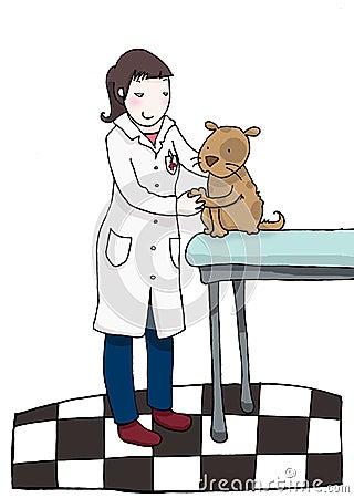 Veterinär- kvinna