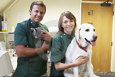 Vetinary Staff With Dog And Cat In Surgery