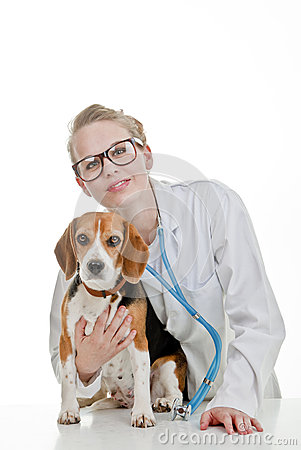 Vets surgery with pet dog