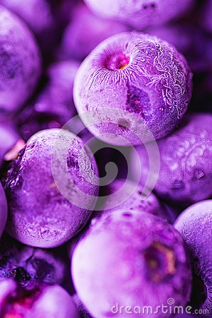 Free Vibrant Frozen Blueberries In Trendy Ultra Violet Color With Beautiful Frost Pattern And Texture. Summer Food Background Stock Images - 108787674