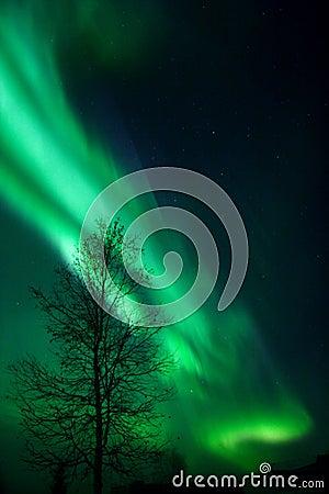 Free Vibrating Aurora Arc Stock Photo - 396720