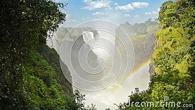Victoria Falls video estoque