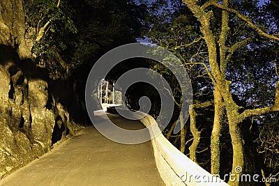 Victoria Peak Trail