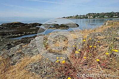 Victoria sea shore