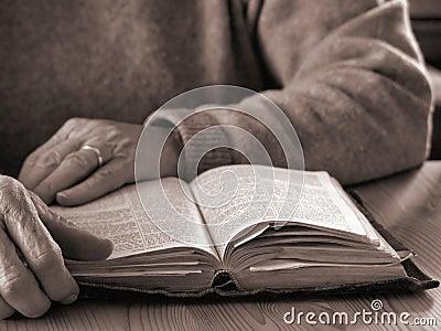 Vida de Faith2
