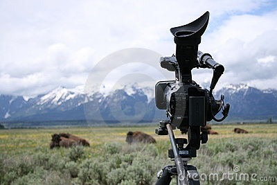 Video camera on tripod with tetons and buffalo