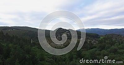 Video montagne, natura, alberi ed animali del fuco 4k stock footage