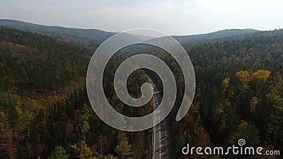 Video vista aerea del fuco sopra la strada nella foresta sul modo al lago Baikal stock footage