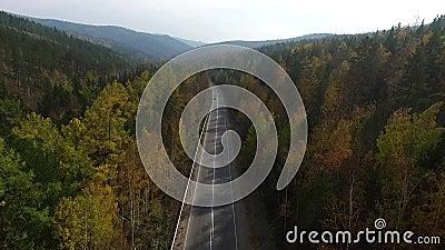 Video vista aerea del fuco sopra la strada nella foresta sul modo al lago Baikal video d archivio