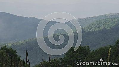 Videowanne einiger grüner nebeliger Berge stock video footage