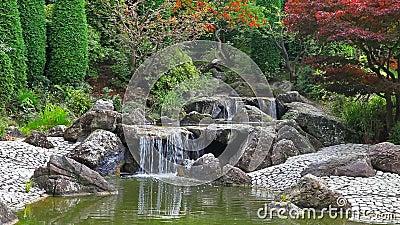 Vid o de timelapse de cascade dans le jardin japonais for Cascade jardin japonais