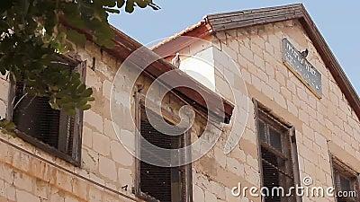 Vieille maison abandonnée à Haïfa banque de vidéos