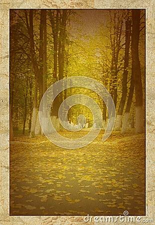 Vieille photo de stationnement d automne