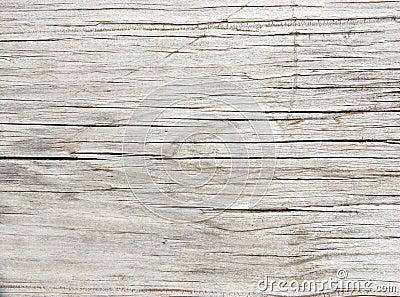 vieille planche fan e de s quoia images stock image 125854. Black Bedroom Furniture Sets. Home Design Ideas