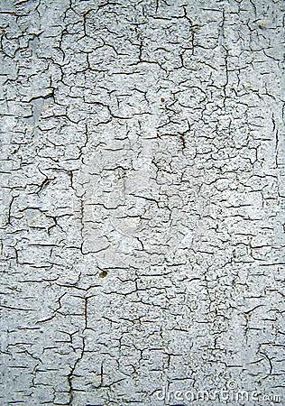 Vieille texture en bois sale
