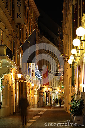 Vienna old town at night Editorial Image