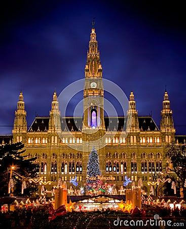 Free Vienna S City Hall Royalty Free Stock Photo - 17340875
