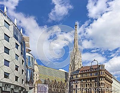The Vienna Stephansdom