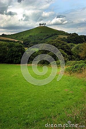 Vier Bäume auf einem Hügel 2