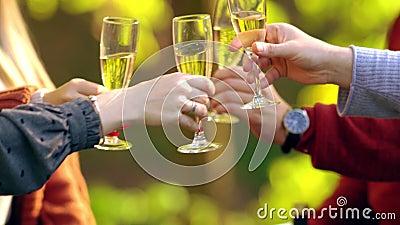Vier mensen juichen wijn toe stock footage
