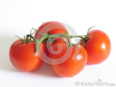 Vier Tomaten