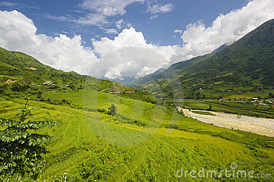 Vietnam Landscape