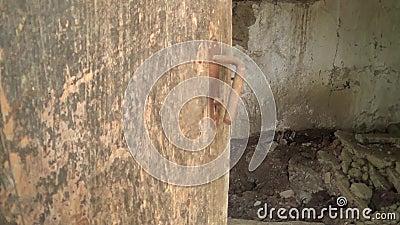 Vieux verrou sur la porte abandonnée banque de vidéos