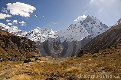 The view from Annapurna Base Camp is impressive