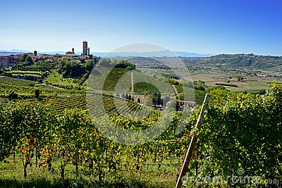 View of Barbaresco Tower and Alba valley