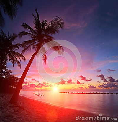 View of a beach with palm trees and swing at sunset, Maldives