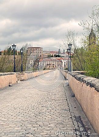 View in the bridge