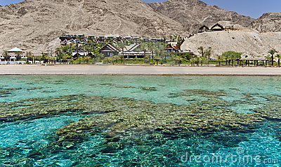 View on coral reef near Eilat, Israel