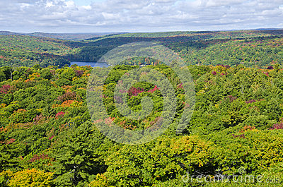 View of Fall Colors from Dorset Tower