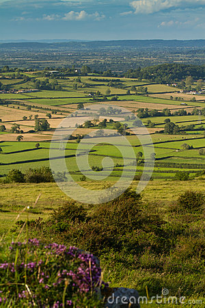 Free View From Crook Peak Somerset Royalty Free Stock Images - 25730069