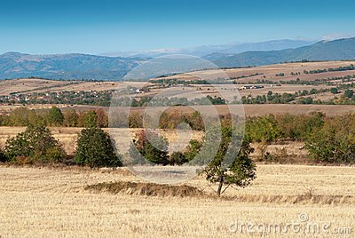 View of harvest field and mountains