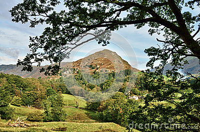 View of Helm Crag, framed within leafy branches