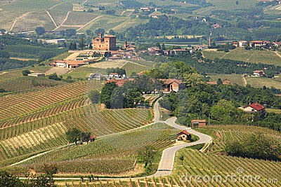 View on hills and vineyards of Piedmont, Italy.