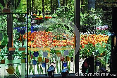 View at the Keukenhof Garden