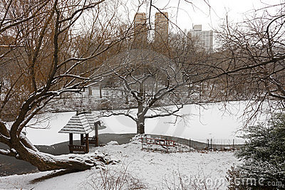 View of the Lake in Central Park during winter