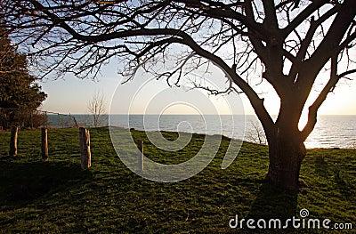 View of Lake Huron