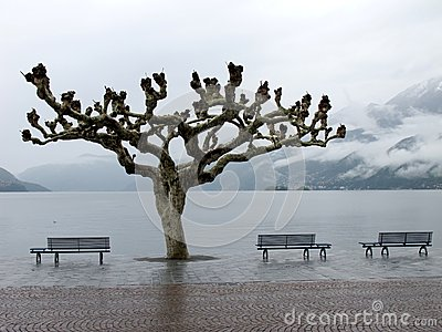 View of lake Maggiore in Ascona