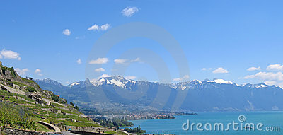 View from the Leman Lake , Switzerland , Panorama