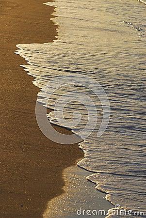 View morning beach