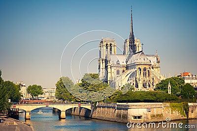 View on Notre Dame de Paris