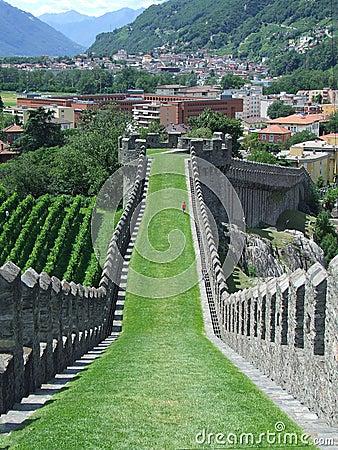 Free View Of Rampart Of Castle To Bellinzona In Switzerland Royalty Free Stock Photo - 48663985